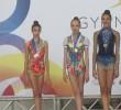 http://old.sportunros.ru/content/pages/162/images/p18cklk0vm12ve1ge8efm18fikht3v.jpg