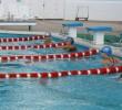 http://old.sportunros.ru/content/pages/259/images/p192lvfjp2ceh1mrfgqj1h5210h76.jpg