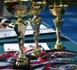 http://old.sportunros.ru/content/pages/263/images/p194cd13qu1ehf1btn1k501p7u1du9i.jpg