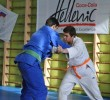 http://old.sportunros.ru/content/pages/263/images/p194cd13r1tam186v1rhlqagmdq15.jpg