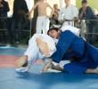 http://old.sportunros.ru/content/pages/366/images/p1a168vog71ru8bn2cojtrt1mhg2n.jpg