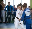 http://old.sportunros.ru/content/pages/366/images/p1a168vog8113c1n421dlo3tp1k1g2q.jpg